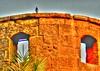 حمامه فوق السور_tonemapped (اميرة بهي الدين - Amira B.Eldeen) Tags: cairo ، علي محمد جامع قلعه القاهره صلاح الدين القديمه