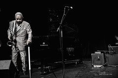 FRANK WEST / GIANTS OF JAZZ FESTIVAL 2011 (GREAT PERFORMANCES  / GEOGRAPHIC ADVENTURES) Tags: west festival frank photography great jazz richard conde giants adventures performances 2011 of