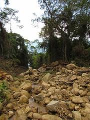 IMG_1912_576x768 (YujiSato) Tags: floresta rochas devastao