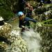 Barranquismo Asturias: ríos y montañas