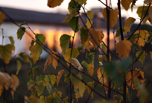 Herbstradtour 03