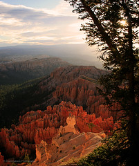 Bryce Early Morning View (D Cunningham) Tags: earlymorning bryce colorsoftheheart coth5 blinkagain