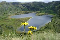 Laguna Alforjacocha
