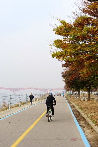 Han River Cycle Path & leaves.