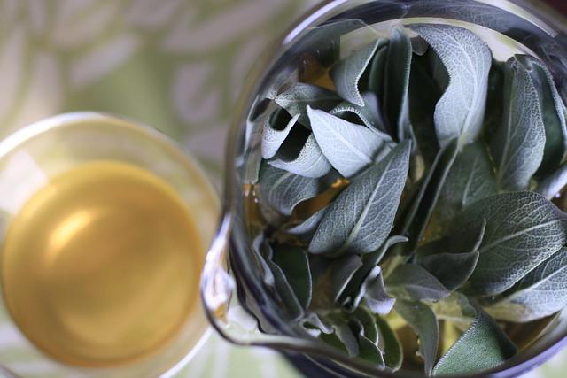 Fresh Sage Tea