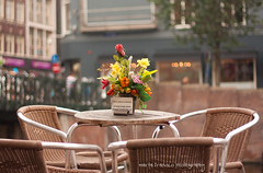 """a """"click"""" in Amsterdam (Marta Fradusco Photography) Tags: flower art love colors amsterdam canon soft bokeh pastel streetphotography dreamy allrightsreserved martafraduscophotography"""