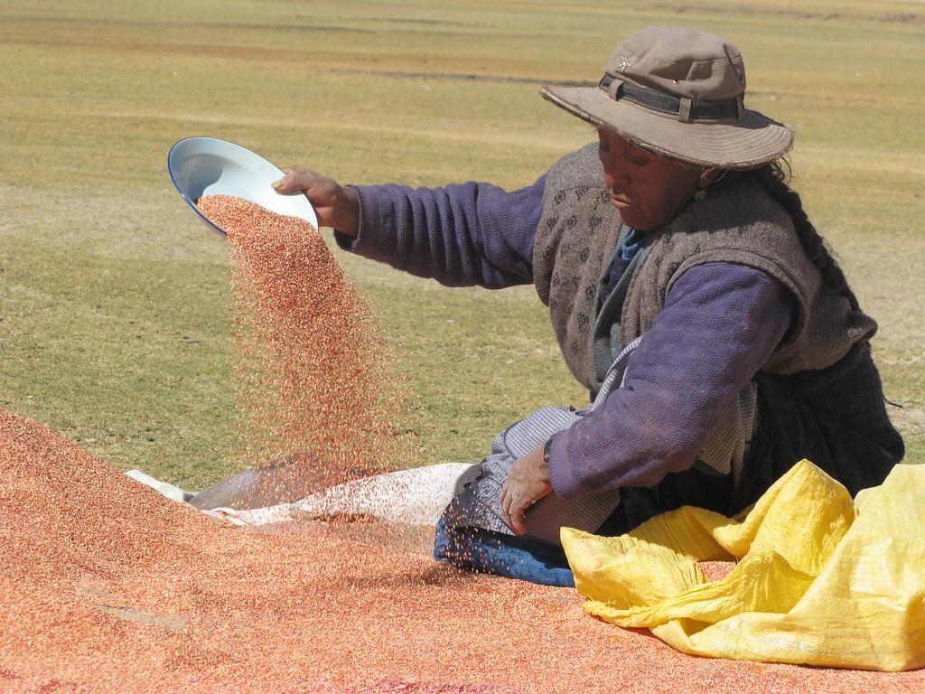 Femme quinoa