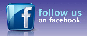 follow_us_on_facebook_widget_