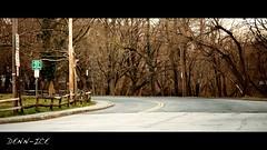 Bronxville (Denn-Ice) Tags: road street trees cinema ny newyork tree green grass canon photography photos streetphotography canon5d cinematic bronxville westchester 135mm westchestercounty 135l bronxriver canon5dmk2 5dmk2