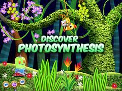 Bobo Photosynthesis