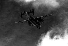 black sky (sparkleplenty_fotos) Tags: light shadow sky blackandwhite white black clouds plane airplane cool uncool sliders hss slid uncool2 uncool8 uncool3 uncool4 uncool5 uncool6 uncool7 happysliderssunday