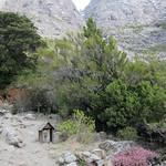 "Cementerio de las Montañas <a style=""margin-left:10px; font-size:0.8em;"" href=""http://www.flickr.com/photos/14315427@N00/6215304073/"" target=""_blank"">@flickr</a>"