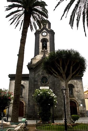 Palmera, drago e iglesia