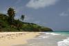 Idle Worship (cormend) Tags: sky sun tree green tourism beach nature water clouds america canon landscape puerto island eos sand surf waves puertorico playa tourist palm rico culebra american caribbean zoni 50d cormend