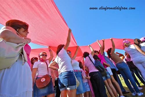 Lazo rosa 2011
