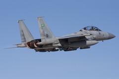 Saudi Eagles Roar! (Tony Osborne - Rotorfocus) Tags: red force eagle flag air royal saudi arabia strike boeing douglas 2008 afb mcdonnell f15 nellis rsaf f15s