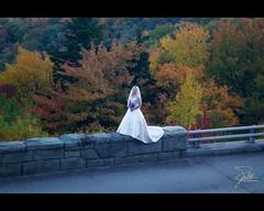 The Bride (Frank Kehren) Tags: autumn wedding fall canon bride unitedstates northcarolina f11 blueridgeparkway 24105 brp sugarmountain canonef24105mmf4lis ef24105mmf4lisusm linncoveviaduct canoneos5dmarkii