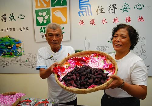 農友陳錦(右)與先生一起以有機工作種植菱角。(圖片來源:林務局)