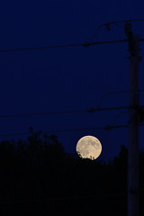 Moon and Wires DSC_4553 by Mully410 * Images