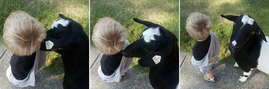 Cayden&Goat