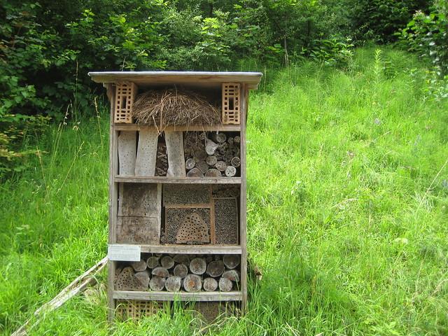 Домик для насекомых в зоопарке Цюриха
