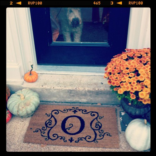 Decorated the door step