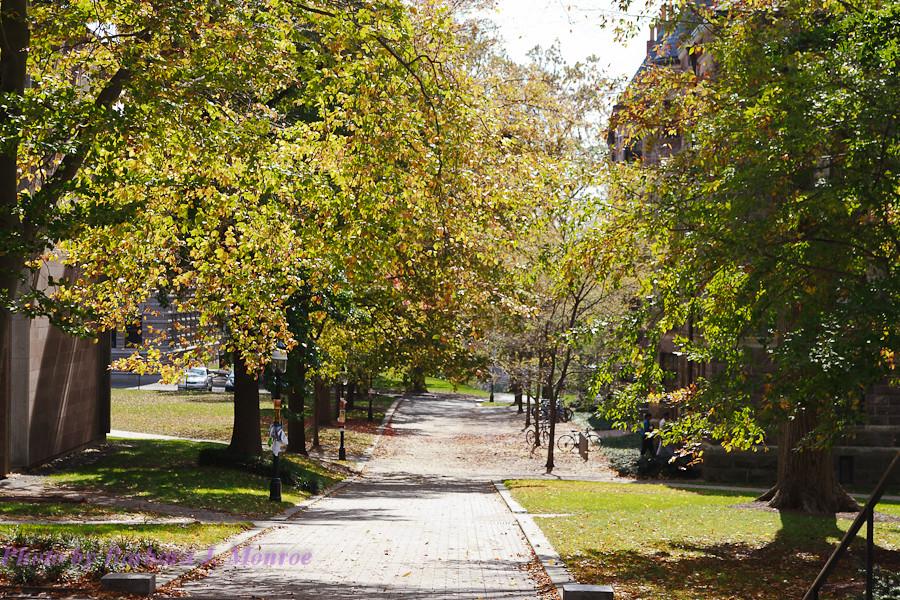Princeton GTG (14 of 34)