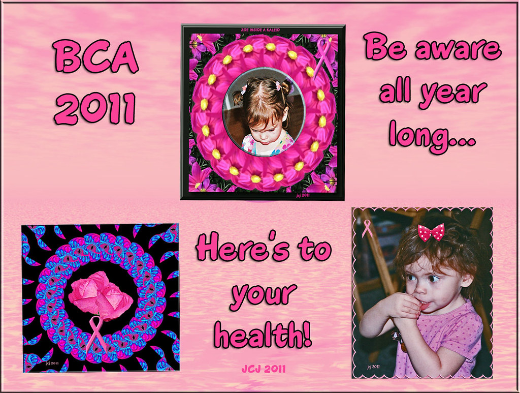 MY LAST BCA PHOTOS FOR 2011 (Best viewed in LARGE)