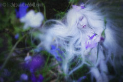 Axana (cureilona of Lightpainted Doll) Tags: art marina ball photography doll dolls martha photos handmade oneofakind ooak bisque bjd custom ilona lidia porcelain joint customised porcelaindoll artistdoll  ooakdoll balljointeddolls snul bychkova   cureilona porcelainbjd porcelainballjointeddoll jurgiel armstronghand bjtales