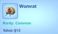 Womrat