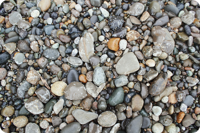 *murdock beach* {12}