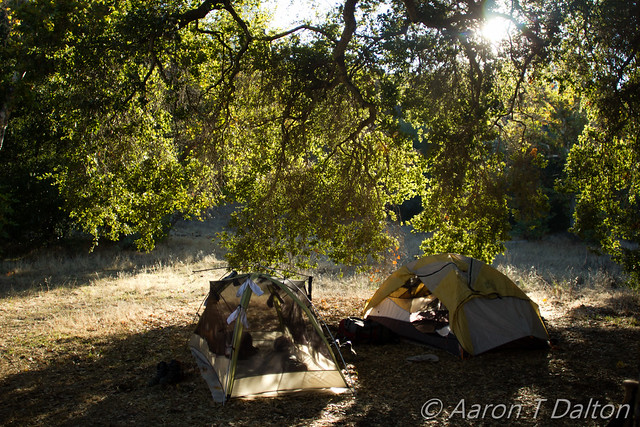 Tents by Morning Sun