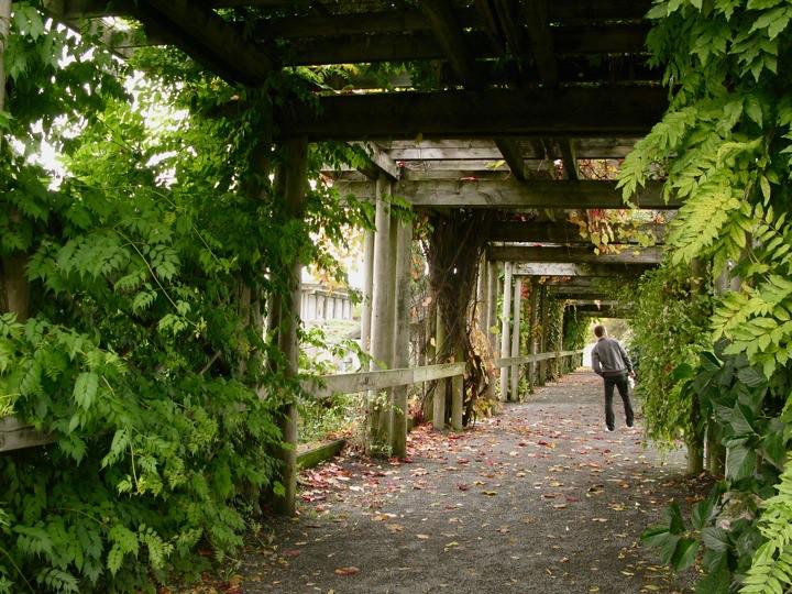 ubc botanical garden 004