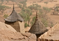 In a Dogon Village (**El-Len**) Tags: africa roof architecture westafrica mali dogon granary thatched fav10 irilli