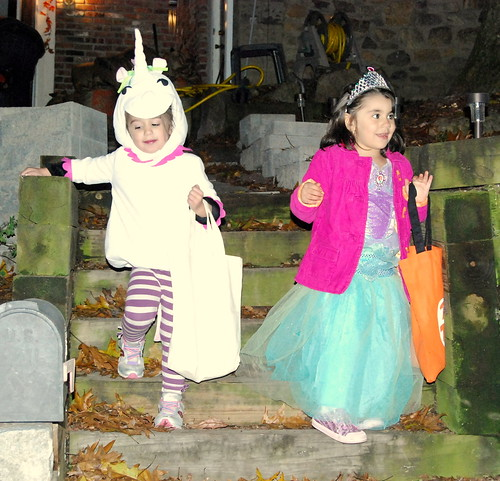 A Unicorn and a Princess Were Walking in the Neighborhood