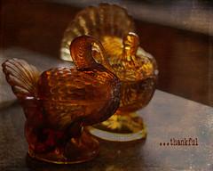 Grateful 11/6 (GailO - Oliag) Tags: november two text warmth textures thankful owp shuttersisters texturetuesday kimklassen mortalmuses gratitude30daysofgratitude