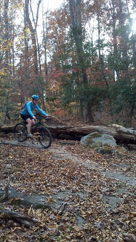 Biking November 13 rachel rocks