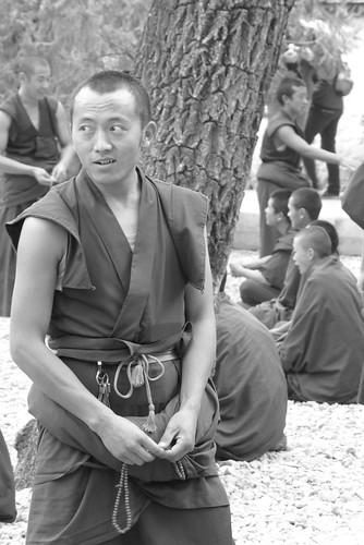 Tibet 215