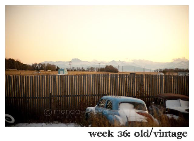 week 36: old vintage