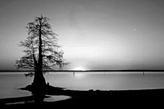 Sunset Silhouette (Danielle Dupree) Tags: city longexposure trees light sunset shadow sky usa sun lake reflection tree water silhouette digital canon lens landscape eos moss fishing louisiana exposure shadows outdoor canon20d kitlens drought oil cypress caddo caddolake oilcity