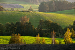 Far Beyond (Slawek Staszczuk) Tags: wood autumn trees mist green grass misty rural forest woodland landscape evening haze colours poland hills foliage textures telephoto fields lone layers birch colourful hazy hilly autumnal rolling bucolic pomerania layered longlens kaszuby pomorskie kashubia ostrzyce gorczyno kashubianlakedistrict kashubianswitzerland