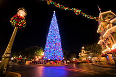 Main Street Holiday Magic (andy castro) Tags: christmas lights holidays disneyland christmastree garland disney christmaslights wreath christmastime mainstreetusa disneylandresort