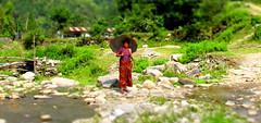 IMG_4963 (wild eyed skittle juice) Tags: travel chris nepal photography interestingness interesting asia flickr wanderlust explore flickred travelphotography chrisramos playgroundgraffiti explored annapurnacircuittrek thehimalayas chrisramosphotography wildeyedskittlejuice