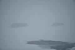 crazy winter day ... (Fjola Dogg) Tags: winter snow ice iceland islandia pad minimalism sland 2012 snjr vetur md fjoladogg fjladgg
