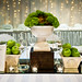 Moss and Apple Centrepiece