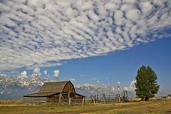 John Moulton Barn (Jonmikel & Kat-YSNP) Tags: barn farm scenic homestead wyoming preservation wy grandtetonnationalpark historicstructure mormonrow culturalresource