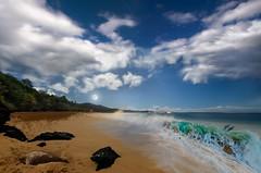 Paradise Planet (Dan Hiris) Tags: park moon beach night hawaii sand nikon paradise waves fuji turtle scene maui full dolphins tropical makena x100 d7000 danhirisphotography