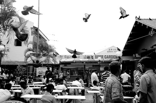 A flight of pigeons overhead this eating place in Little India, Singapore