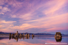 Painted Sky Above Mono Lake (Edward Mendes) Tags: california statepark travel pink blue autumn sunset red color reflection fall nature water rock horizontal clouds print landscape photography photo desert fineart scenic h2o formation zen monolake tufa mountian waterscape californiastatepark tiogapass highway395 easternsierra leevining lakescape clearingstorm monocounty monobasin fineartprints prestine fineartlandscapephotography finearttravelphotography fineartnaturephotography fineartscenicphotography fineartwalldecor