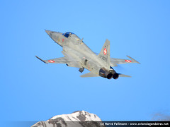 Meiringen-Axalp 2011 n-18 (avionslegendaires) Tags: force suisse tiger f5 militaire avion meiringen 2011 aerienne axalp